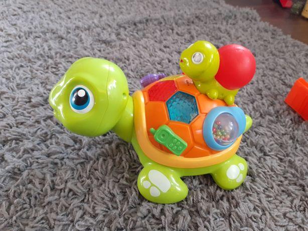 Zabawny żółwik