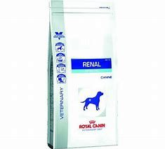 Royal Canin Veterinary Diet Renal Special RSF13 2kg