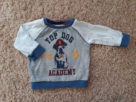chłopięca bluza marki F&F. Rozmiar 74 (6-9 m-cy)