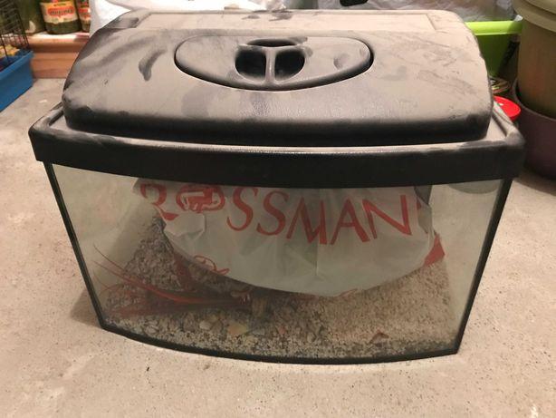 Akwarium z osprzętem