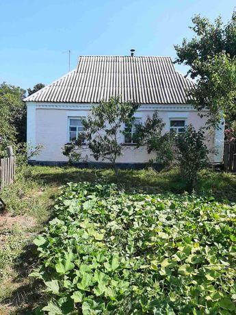 Будинок село Червона Мотовилівка