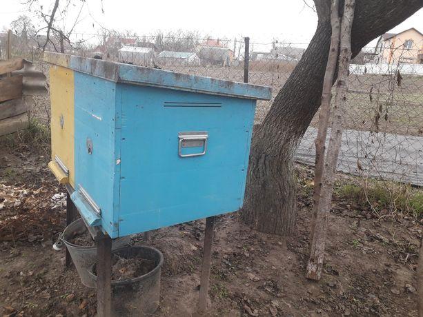 Улик для пчёл
