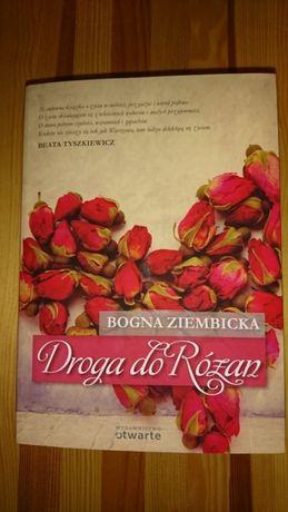 Droga do Różan Ziembicka