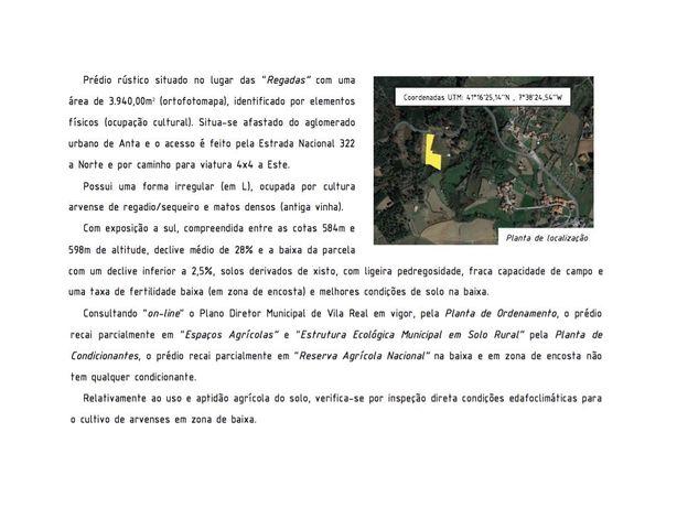 Terreno - construção e cultivo - Anta - Vila Real