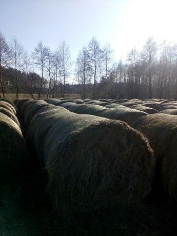 Sprzedam siano z łąk nadwislanych