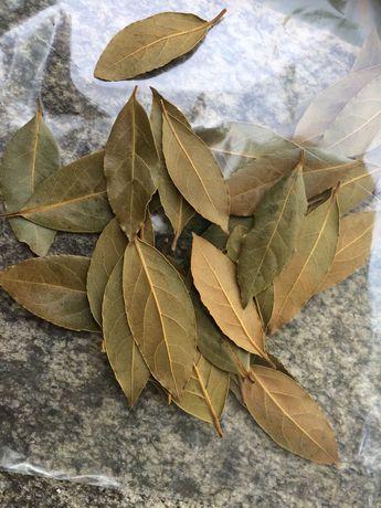 Folhas de Louro para temperos