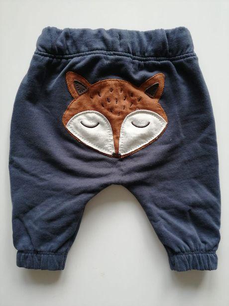 Spodnie Newbie rozmiar 56