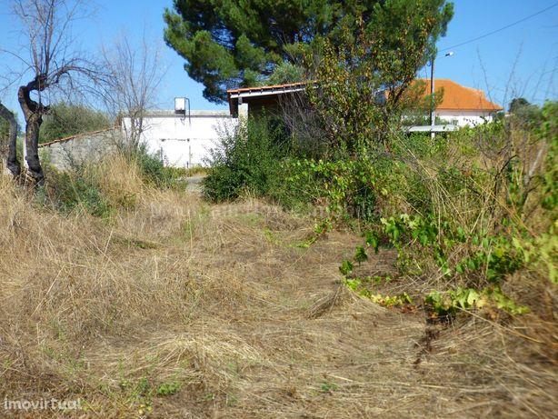 Terreno Para Construção  Venda em Ervedal e Vila Franca da Beira,Olive