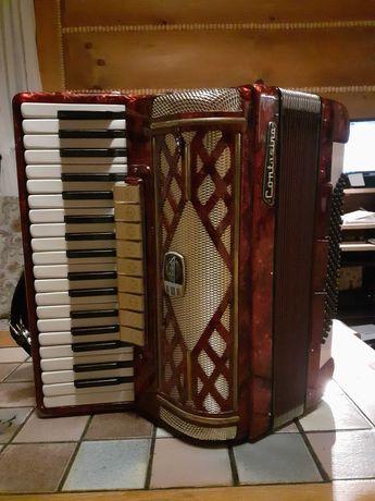 akordeon 96 basów contasina