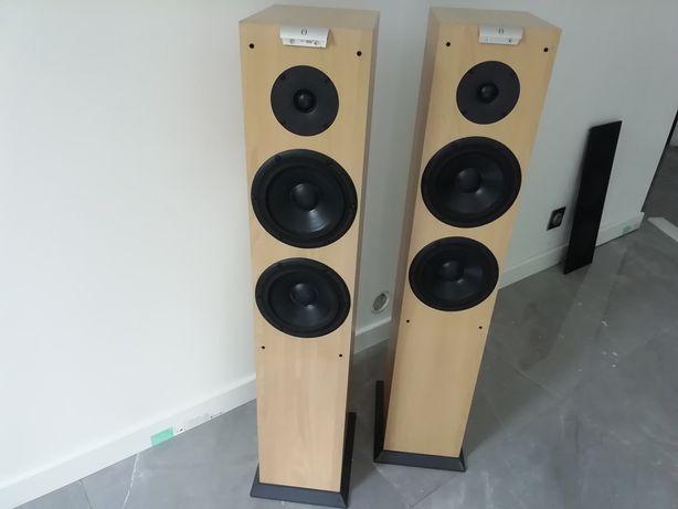 AudioVector C m2 Duńskie Kolumny
