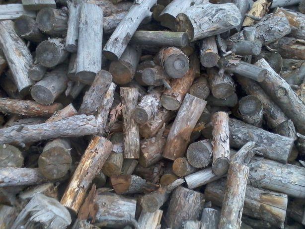 drzewo,drewno opałowe sosna, sosnowe