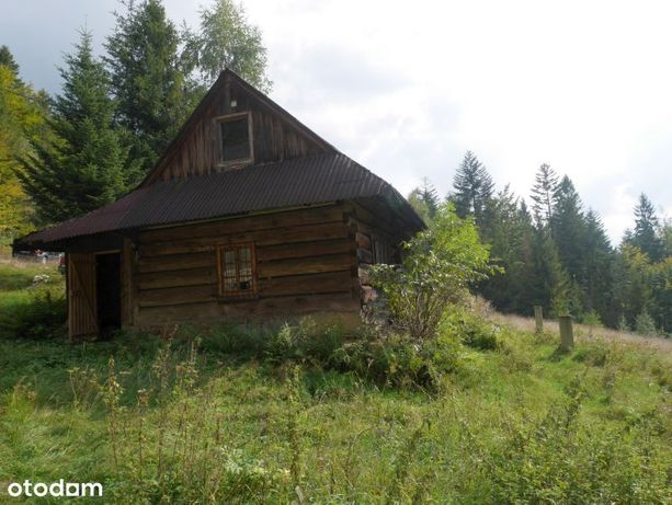 Wisła- drewniany dom o pow. 80m2 z działką 85 ar