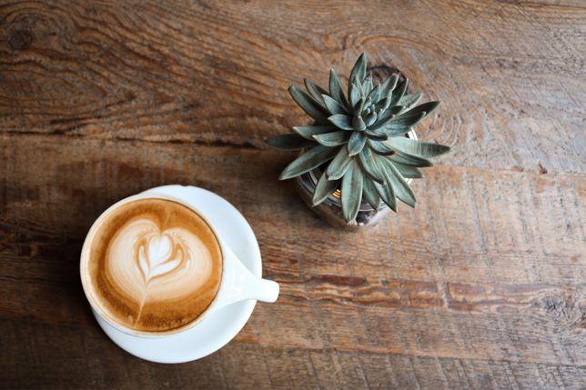 Trespasse de cafetaria totalmente equipada e rentável