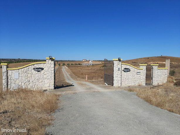 Moradia Isolada T6 Venda em Almodôvar e Graça dos Padrões,Almodôvar