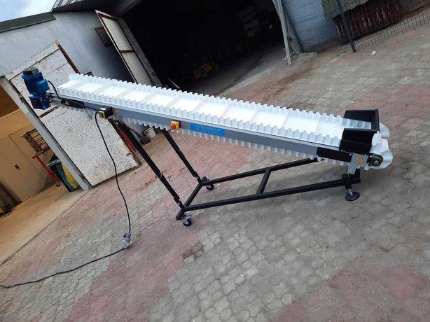 Przenośnik taśmowy, taśmociąg 3 m, PRODUCENT