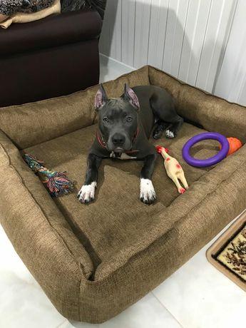 Лежаки для собак и котов
