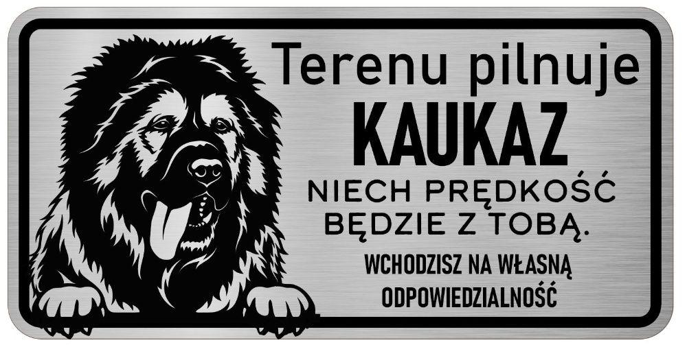 Uwaga Pies Tabliczka nierdzewna Kaukaz Środa Wielkopolska - image 1