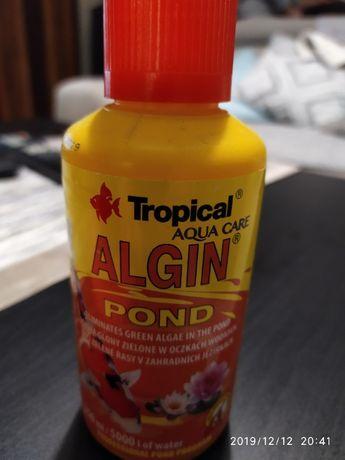 Tropical ALGIN Pond