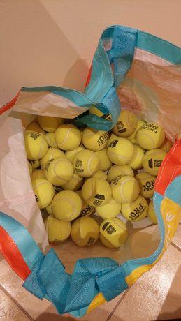 50 bolas para cão