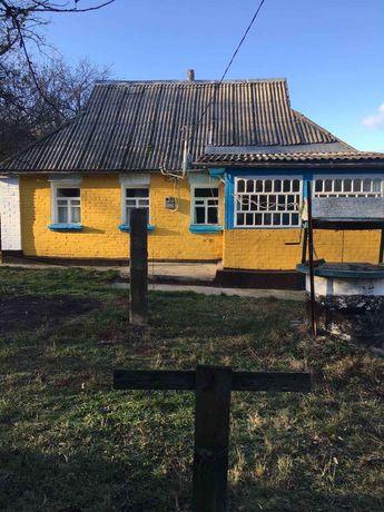 Продам будинок село Шандра