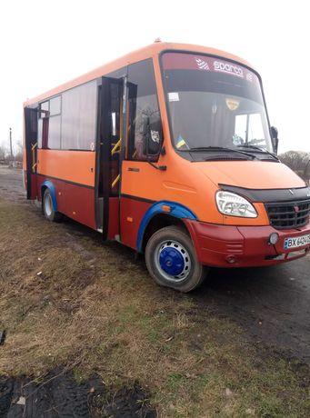Автобус Рута