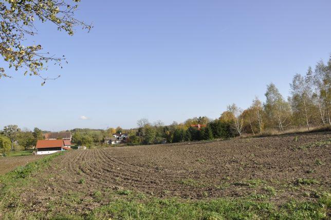 Piękna działka budowlana Skolity 8000 m2 koło 20 km od Olsztyna
