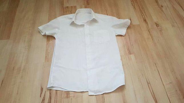 Koszule na 7-8 lat z kolnierzykiem
