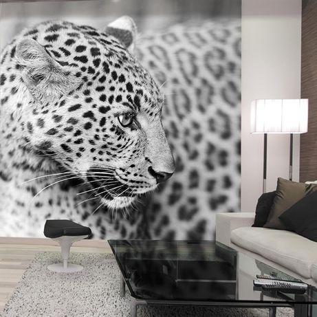 Дизайн интерьера (фотообои)