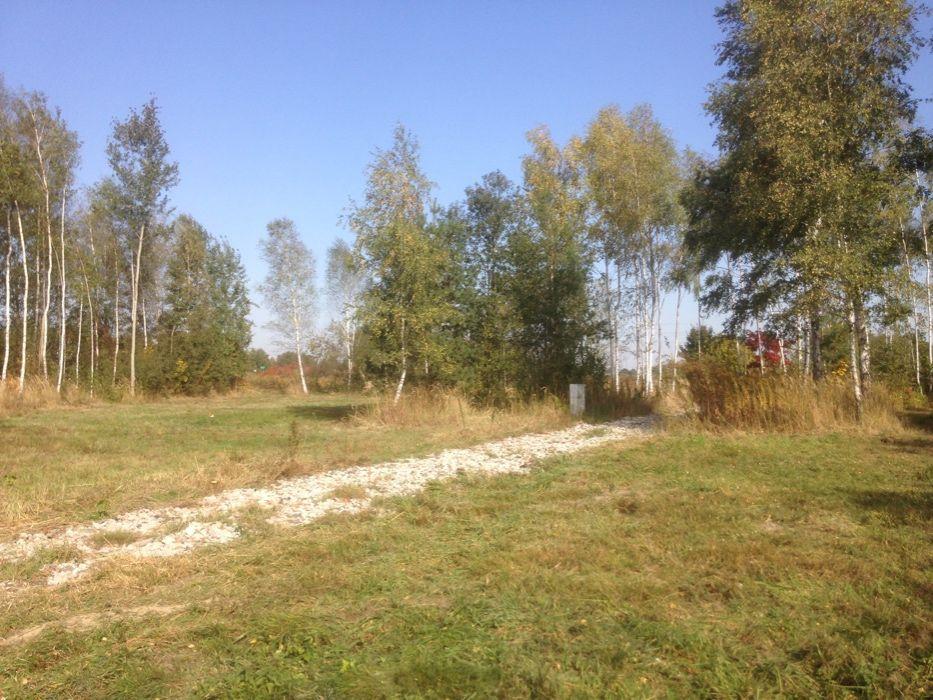 Działka budowlana działki Nieborowice Nieborowice - image 1