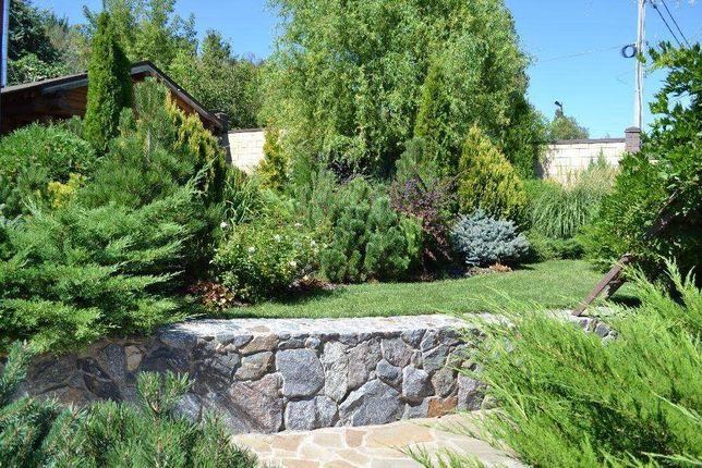 Ландшафтный дизайн и озеленение.Благоустройство территорий.