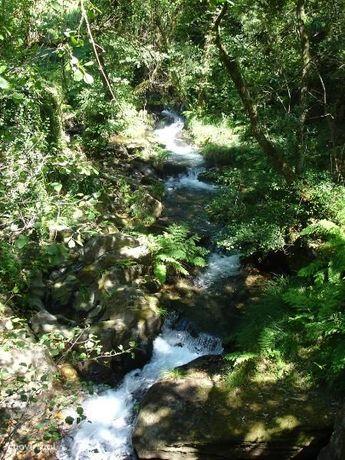 Terreno Rústico  Venda em Gondar e Orbacém,Caminha