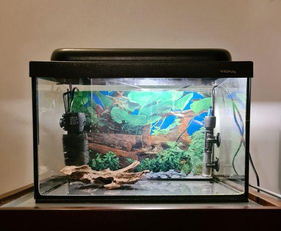 WROMAK Akwarium z oświetleniem i dodatkami filtr grzałka kamienie
