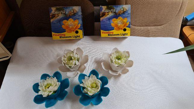 Sprzedam pływającei płonące lilie do basenu