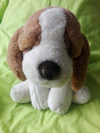 Beagle pies maskotka