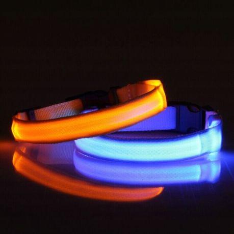 Obroża Dla Psa Świecąca LED | Różne Kolory
