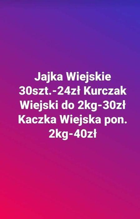 Jajka Wiejskie Sosnowiec - image 1