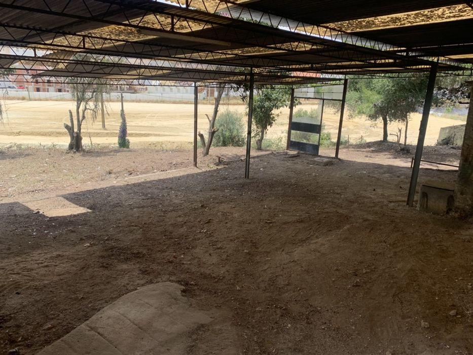 DEMOLIÇÕES ,Limpeza de terrenos e arrecadações,retiramos mobília Sacavém E Prior Velho - imagem 1