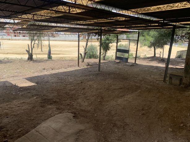 DEMOLIÇÕES ,Limpeza de terrenos e arrecadações,retiramos mobília