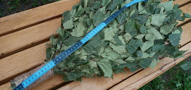 Веники для сауны и бани березовый, дубовый, липовый, эвкалиптовый