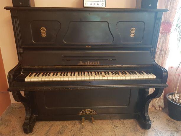 Pianino, pianino Małecki