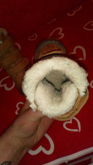 Buty zinowe carmel lasocki r 20 Lubsko - image 1