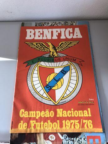 Revista Benfica Campeão Nacional 1975/76