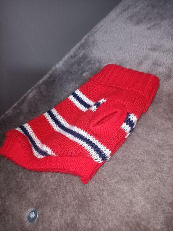 Sweterek dla kota i psa