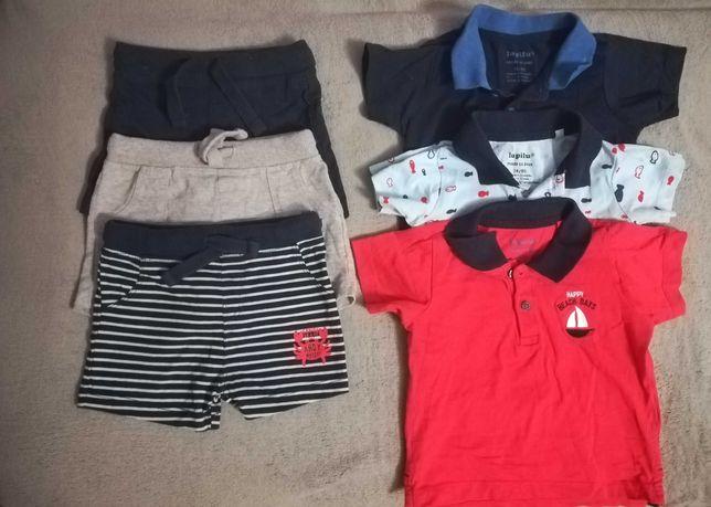 Koszulki i spodenki chłopięce Lupilu