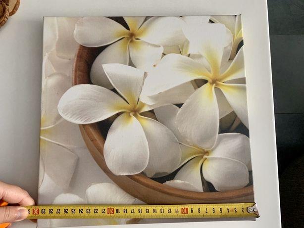 Картина цветы магнолии. Новая!