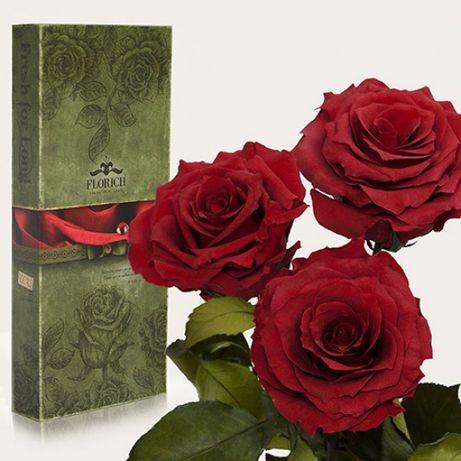 Три долгосвежих розы Малиновый Родолит 5 карат