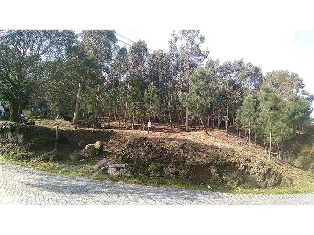 Terreno para construção em Carvalhal - Barcelos