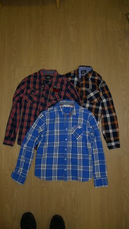 Camisas portes inlcluidos