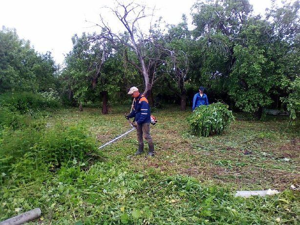 Покос травы, уборка территории , культивация корчевание пней