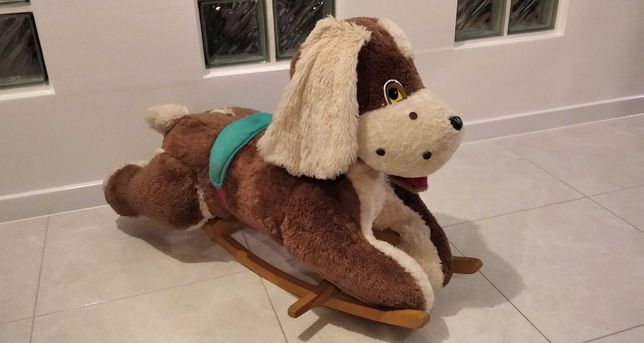 Pies na biegunach